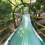愛知県大府市「あいち健康の森公園」感想…ロングスライダーが最高