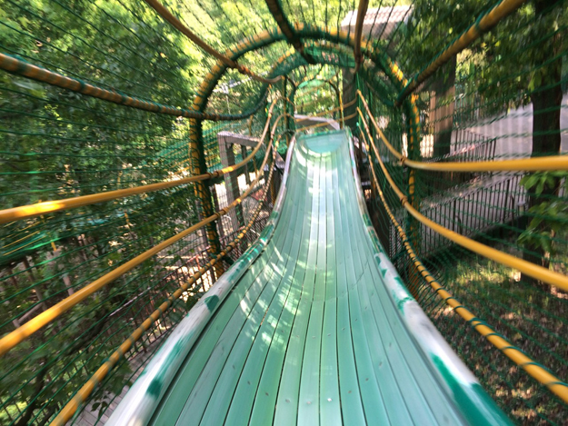愛知県付近のオススメの公園ランキングまとめ…お金を使わず遊べます