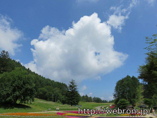 山頂駅から見える景色