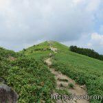 長野県下伊那郡「ヘブンスそのはら」夏の昼間に行った感想