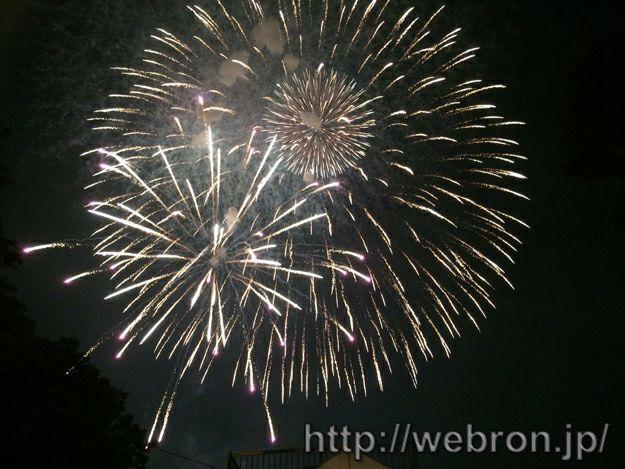 愛知県東海市「大池公園 東海まつり花火大会」で近くで見れるスポット