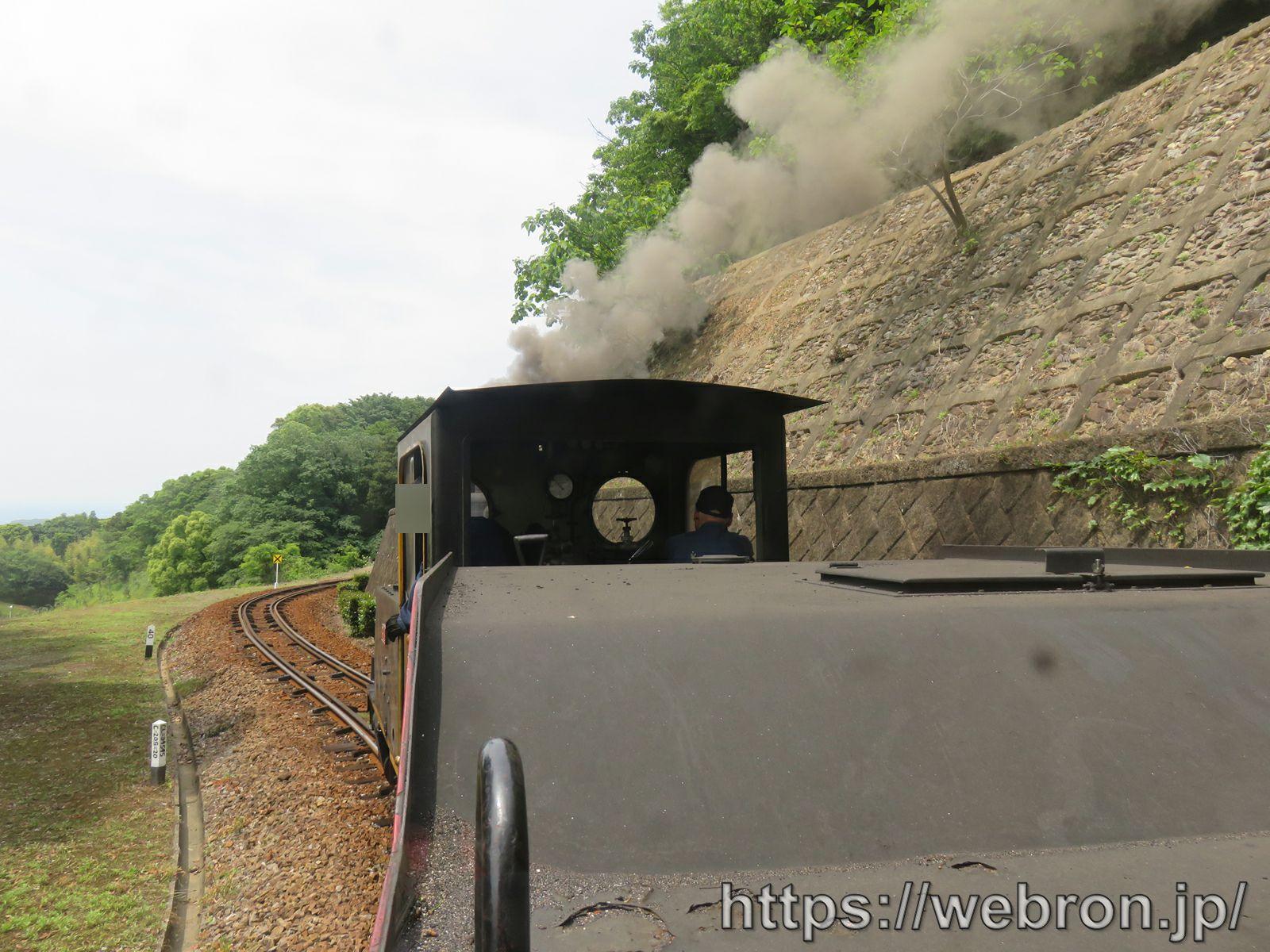 愛知こどもの国のゆうひが丘の蒸気機関車