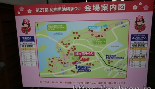 愛知県知多市「佐布里池 梅まつり」行ってみた感想…花の種類も豊富だし自然も多いし屋台も美味しかったけど激混み注意