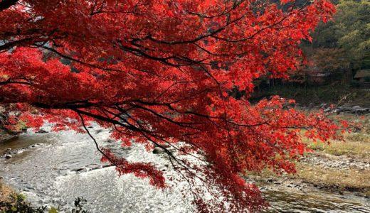 豊田市足助の香嵐渓に紅葉狩りに行ってみた感想…混雑は凄いが絶景だらけでした